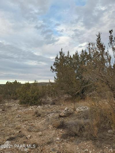 1020 E VERDE RANCH RD, Paulden, AZ 86334 - Photo 1