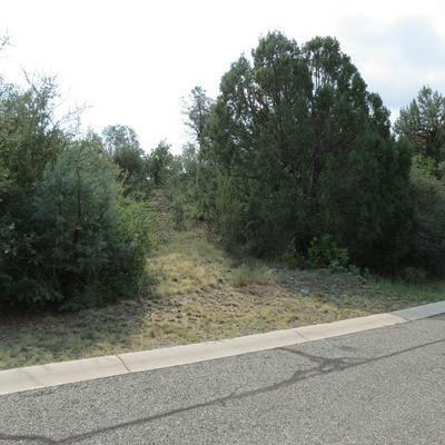 591 DONNY BROOK CIR, Prescott, AZ 86303 - Photo 2