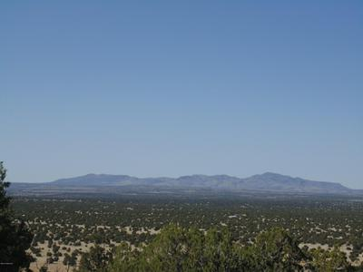 556 N CALIENTE WIND WAY, Seligman, AZ 86337 - Photo 2