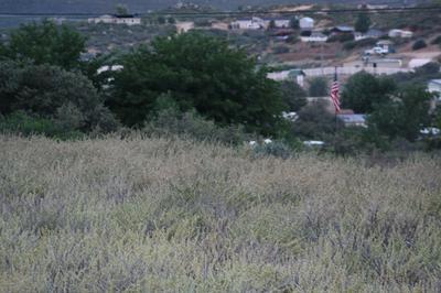 505 N AMBASSADOR RD, Dewey-Humboldt, AZ 86327 - Photo 1