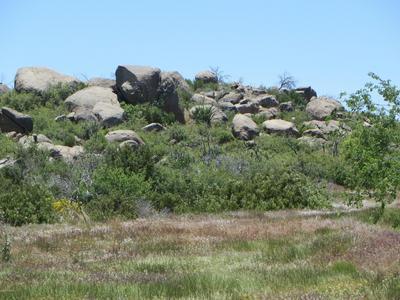 17563 W FOOTHILL - 3 ROAD, Yarnell, AZ 85362 - Photo 2