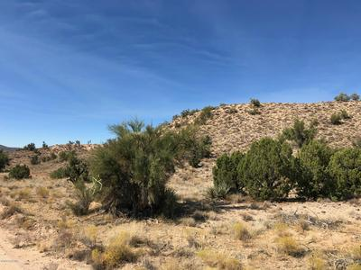 LOT 312 HOWARD ROAD, Kingman, AZ 86401 - Photo 2