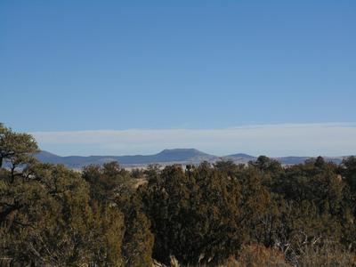 701 SIERRA VERDE RANCH, Seligman, AZ 86337 - Photo 2