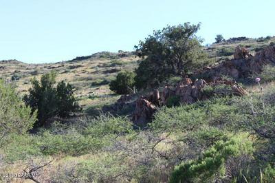TBD OLD SYCAMORE ROAD, Mayer, AZ 86333 - Photo 2