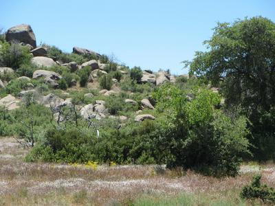 17563 W FOOTHILL - 3 ROAD, Yarnell, AZ 85362 - Photo 1