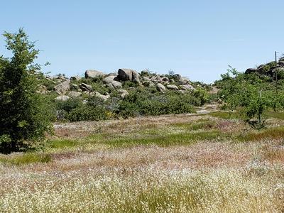 17563 W FOOTHILL -2 ROAD, Yarnell, AZ 85362 - Photo 2