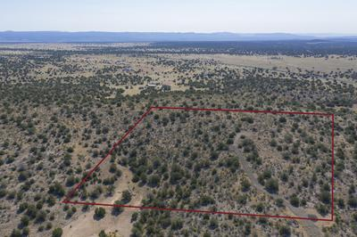 0 POINTER TRAIL, Paulden, AZ 86334 - Photo 1