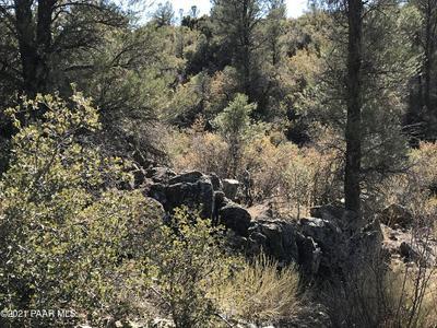 18204 W BUCKHORN DR, Peeples Valley, AZ 86332 - Photo 2