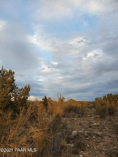 1020 E VERDE RANCH RD, Paulden, AZ 86334 - Photo 2