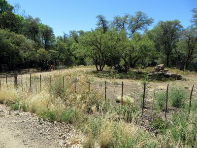 22650 S METATE FOREST TRAIL, Yarnell, AZ 85362 - Photo 1