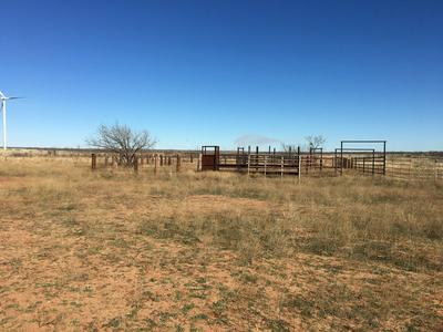 000 COUNTY RD 445, Roby, TX 79546 - Photo 2