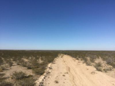 TBD COUNTY RD 223, Toyah, TX 79785 - Photo 1