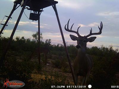 TBD S HWY 349, Rankin, TX 79778 - Photo 1