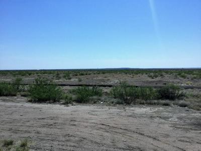 2434 HWY 2448, Saragosa, TX 79780 - Photo 1