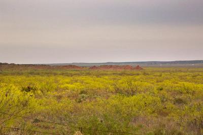 0 N OLD COLORADO CITY HWY, Coahoma, TX 79511 - Photo 1