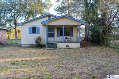 910 WILKERSON AVE, Kingstree, SC 29556 - Photo 1