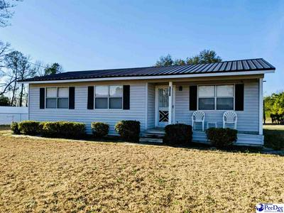 2141 OAKLAND RD, Hamer, SC 29547 - Photo 1
