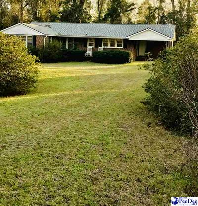 1037 MANNING HWY, Greeleyville, SC 29056 - Photo 1