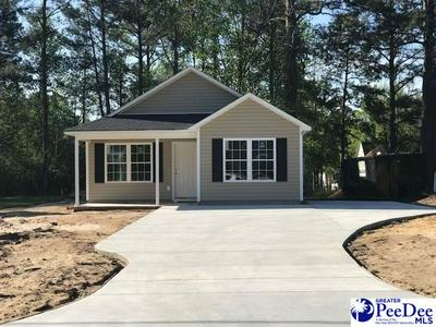 LOT 2 E NORTHSIDE AVENUE, Marion, SC 29571 - Photo 1