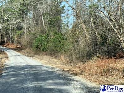 16.40 +/- TRACT PAUL HILLIAN ROAD, Chesterfield, SC 29709 - Photo 1