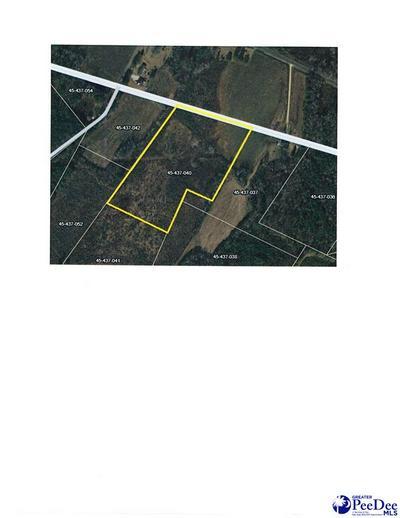 0 COW HEAD RD, Johnsonville, SC 29555 - Photo 2