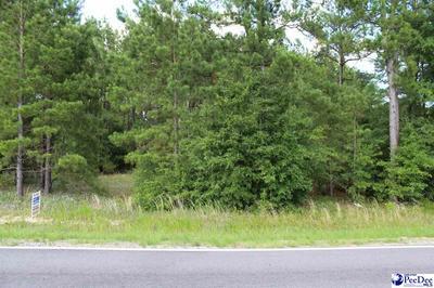 TBD 2736 OAKRIDGE RD., Gresham, SC 29546 - Photo 2