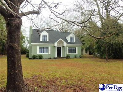 201 SAINT CHARLES RD, BISHOPVILLE, SC 29010 - Photo 1