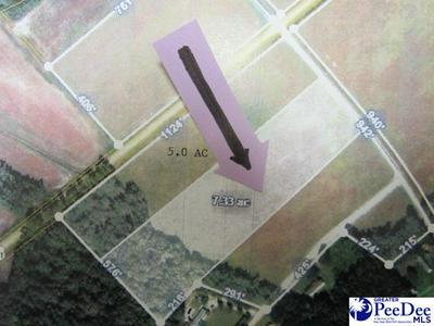 TBD POTATO HOUSE ROAD, Darlington, SC 29532 - Photo 1