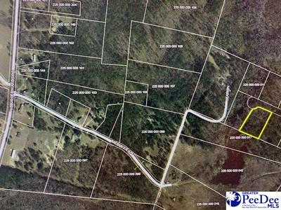 LOT 3 1.65 +/- AC E OF LEAR LN, Chesterfield, SC 29709 - Photo 2