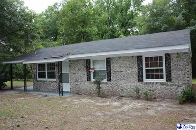 250 DIXIE ST, Johnsonville, SC 29555 - Photo 2