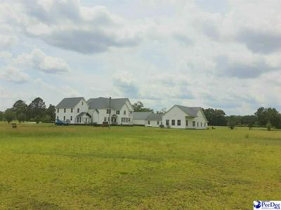 248 W CANAL RD, Sellers, SC 29592 - Photo 1