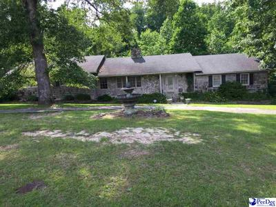 205 CURTIS RD, Chesterfield, SC 29709 - Photo 2