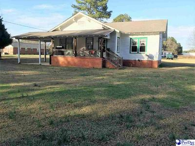 100 MARIGOLD DR, Chesterfield, SC 29709 - Photo 2