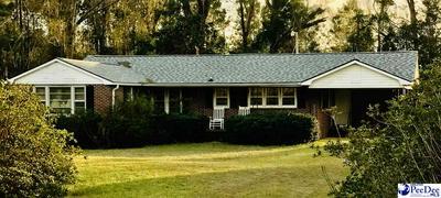 1037 MANNING HWY, Greeleyville, SC 29056 - Photo 2