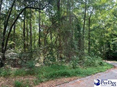 LOTS 8-12 HANNA DR, Chesterfield, SC 29709 - Photo 2
