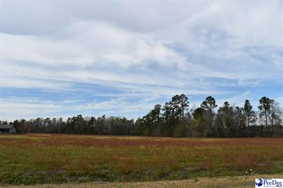 TBD E LYNHURST ROAD, Pamplico, SC 29583 - Photo 1