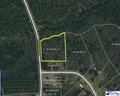 PEACHTREE RD., Chesterfield, SC 29709 - Photo 1