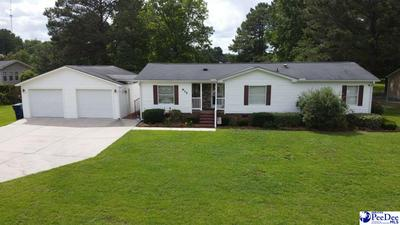 935 WHITE POND RD, Effingham, SC 29541 - Photo 1