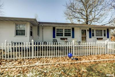 1339 N LINCOLN AVE, TAYLORVILLE, IL 62568 - Photo 1