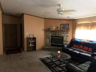 410 N ORANGE ST, HAVANA, IL 62644 - Photo 2