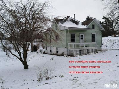 138 E HOEHN ST, CARLINVILLE, IL 62626 - Photo 1