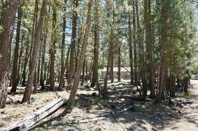 6 NOZI TRL, Graeagle, CA 96103 - Photo 2