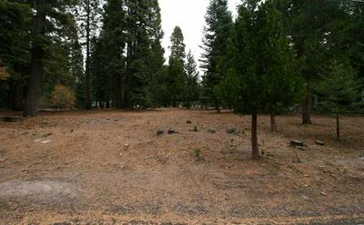 1118 LASSEN VIEW DR, Lake Almanor Country Club, CA 96137 - Photo 1