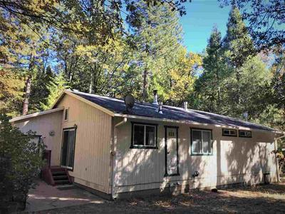 225 WILD PLUM RIDGE RD, Sierra City, CA 96125 - Photo 2