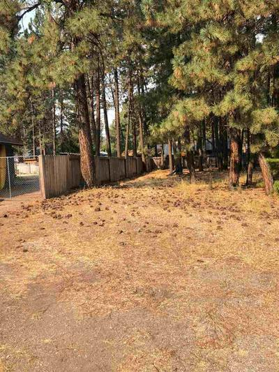 434 PURDY RD, Chester, CA 96020 - Photo 2