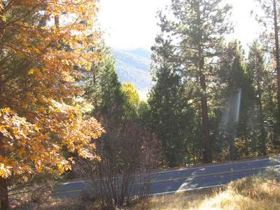 3167 DIAMOND MOUNTAIN ROAD, Taylorsville, CA 95983 - Photo 1