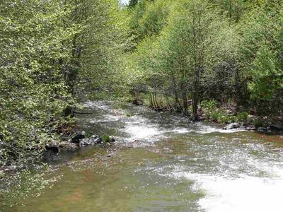 1040 DIAMOND MOUNTAIN ROAD, Taylorsville, CA 95983 - Photo 1