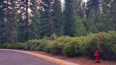6 FOX PEAK DR, Lake Almanor, CA 96137 - Photo 1