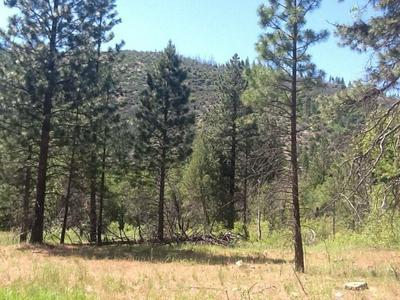 7400 DIAMOND MOUNTAIN ROAD, Taylorsville, CA 95983 - Photo 1