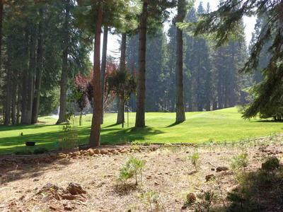 248 LAKE ALMANOR WEST DR # 1, Lake Almanor West, CA 96020 - Photo 1